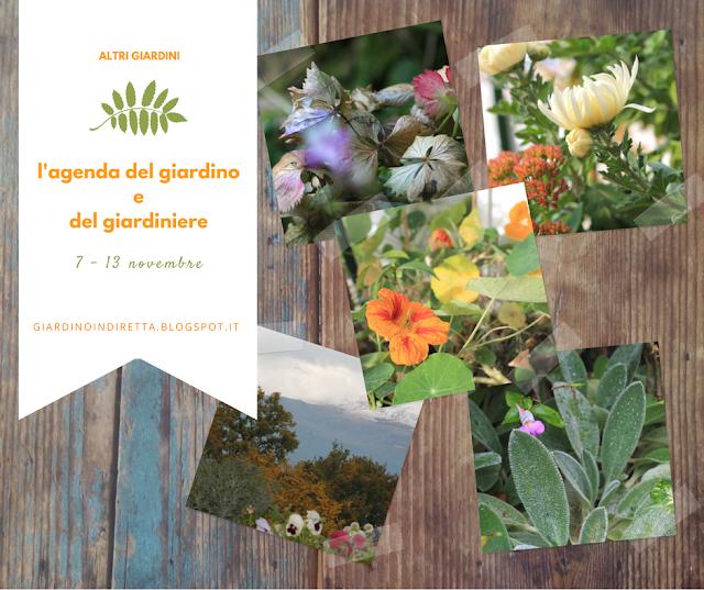 l'agenda del giardino e del giardiniere - un giardino in diretta