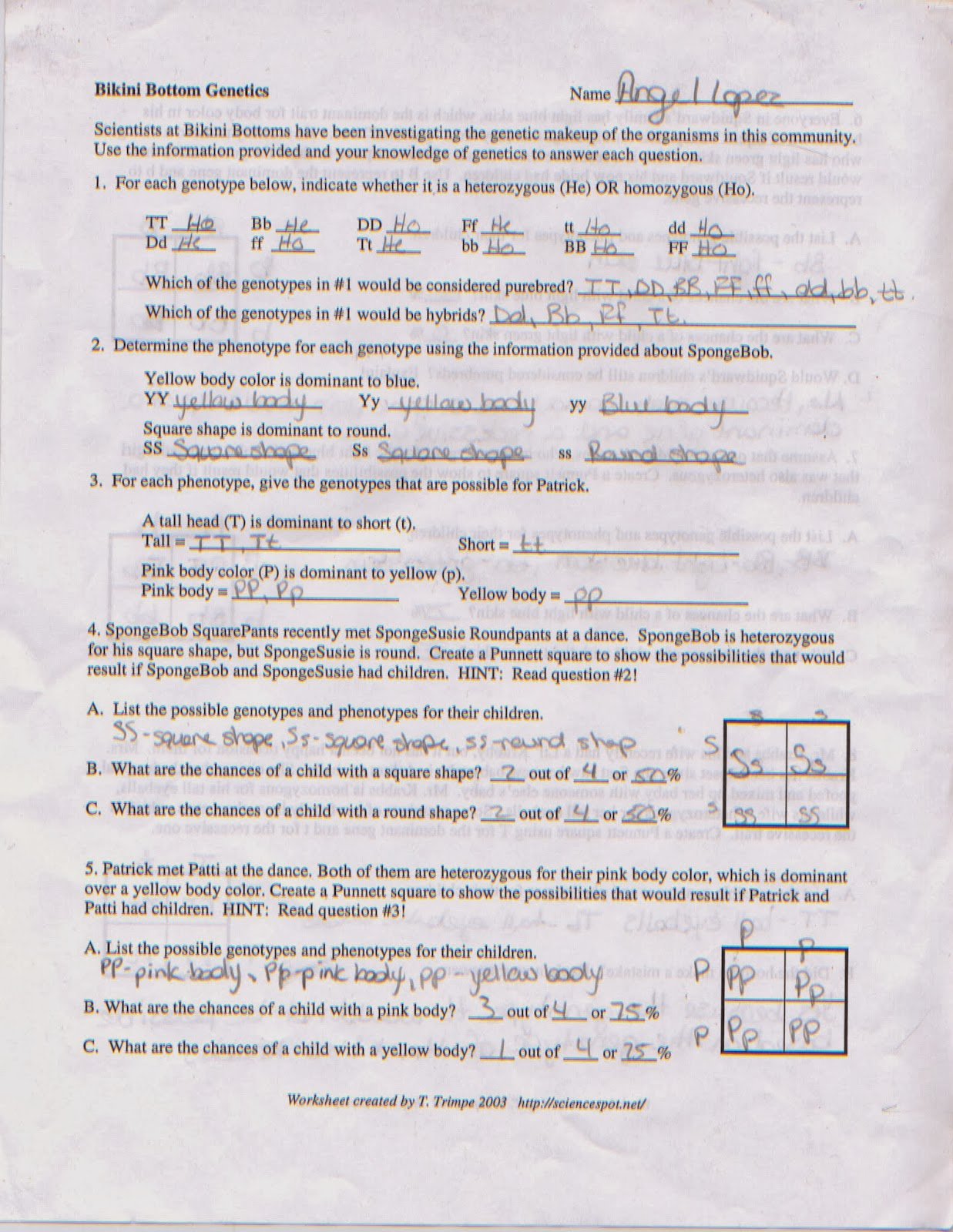 Biology Blog Spongebob Genetics Worksheet