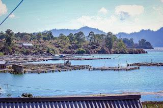 Amazing lake Batur - Kintamani Bali