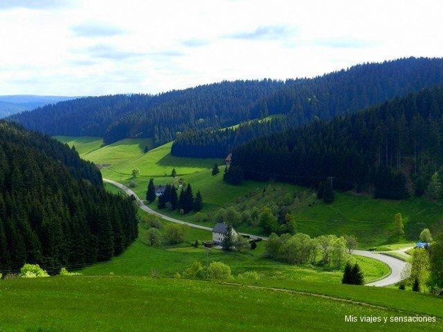 Valle en la Selva Negra, Alemania