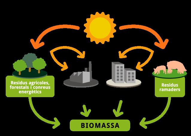 Biomassa Energy