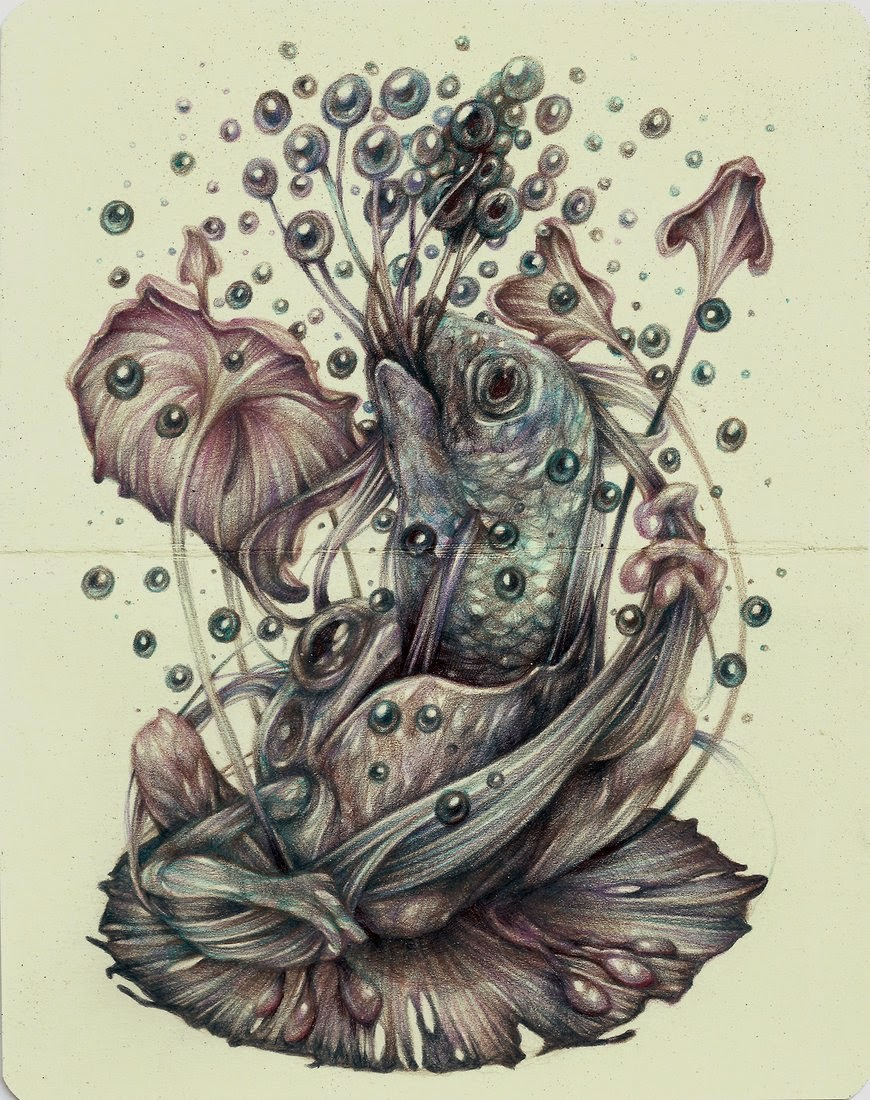 04-Marco-Mazzoni-Surreal-Animal-Drawings-www-designstack-co