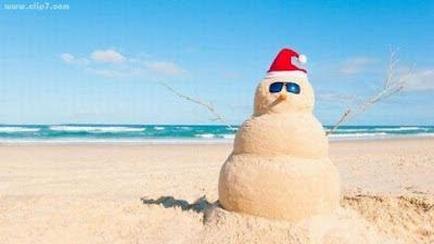 Foto divertida: mono de ¿nieve?  en la playa