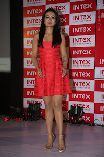 Actress Catherine Tresa Unveils Intex Air Conditioners  0206.jpg