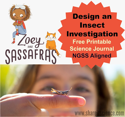 Design an Insect Investigation with Zoey and Sassafras- NGSS Linked Activity