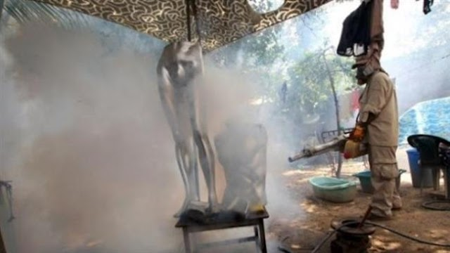 Bolivia detects first cases of Zika-induced microcephaly