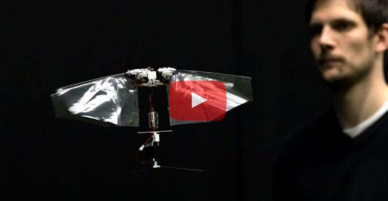 Invenção de mosca robótica que voa de verdade surpreende especialistas - Capa