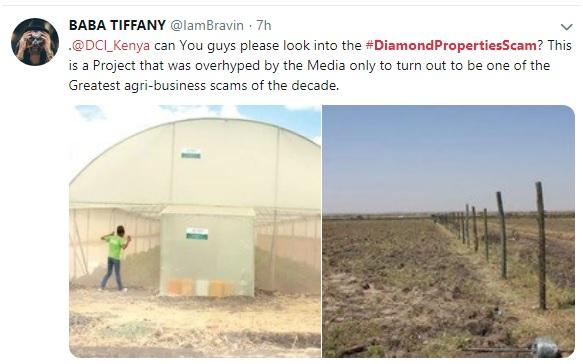 Diamond Property Merchants greenhouse project hyped by MAINA
