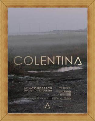 wiki recenzie ada condeescu colentina