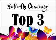 Top 3 at Mrs A.'s Butterfly Challenge