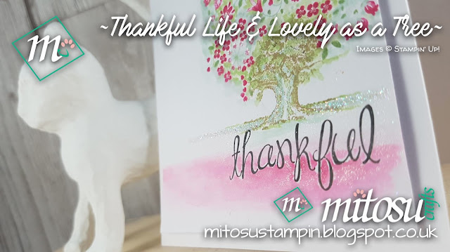 Stampin Up UK Thankful Life Lovely as a Tree Jay Soriano Mitosu Shop Stampinup SU Online 5