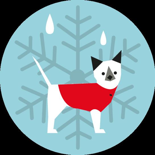 Pictograma de un perro protegido con una camiseta del frio y la humedad