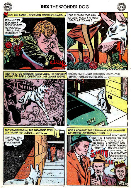 Adventures of Rex the Wonder Dog v1 #1 dc 1950s golden age comic book page art by Alex Toth
