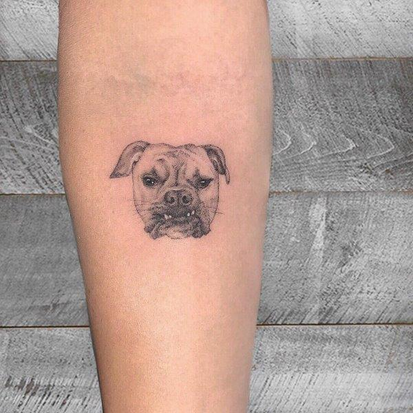 Bulldog Tattoo