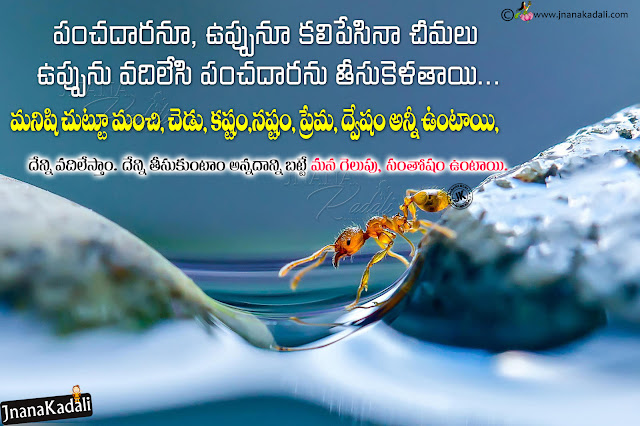 telugu relationship value messages, telugu online relationship quotes greetings