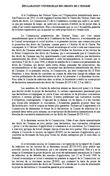 un declaration article 23