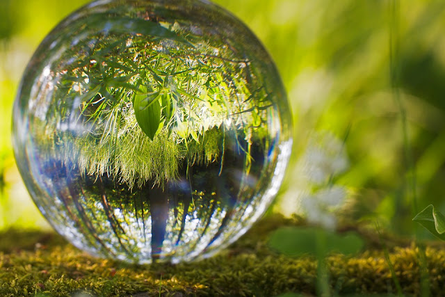 Interrelationship between biological and socio-cultural aspect of environment