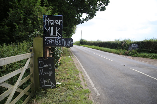 Raw milk at The Calf at Foot Dairy, Norfolk
