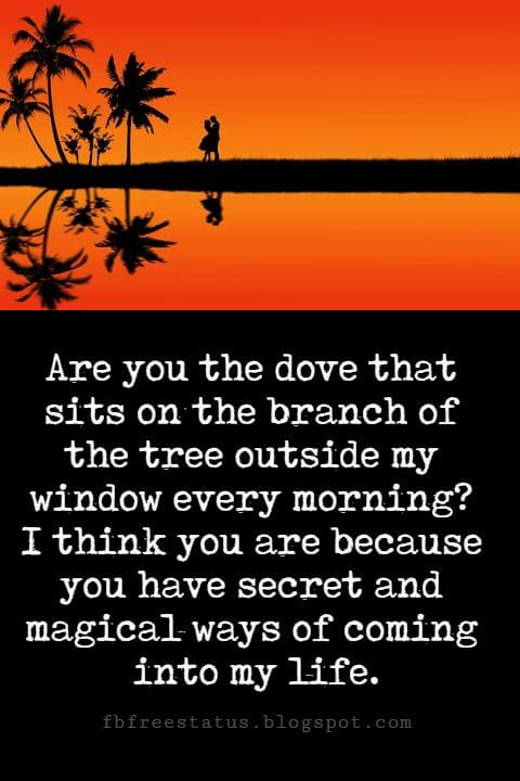 Sweet Love Sayings, Are you the dove that sits on the branch of the tree outside my window every morning? I think you are because you have secret and magical ways of coming into my life.