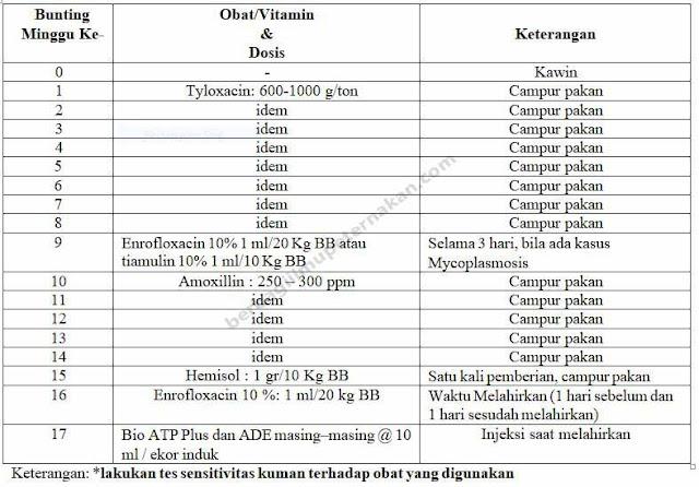 Tabel 2.Program Medikasi untuk Induk Bunting