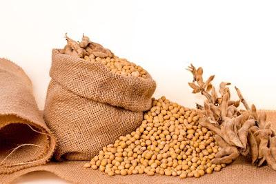 kacang-kedelai,www.healthnote25.com