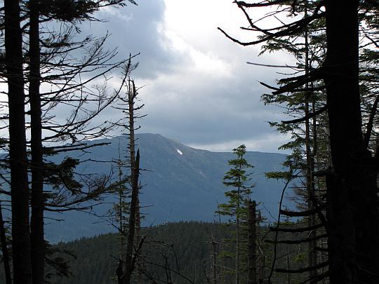 Babia Góra (słow. Babia hora, 1725 m n.p.m.) - widok z podejścia na Policę.