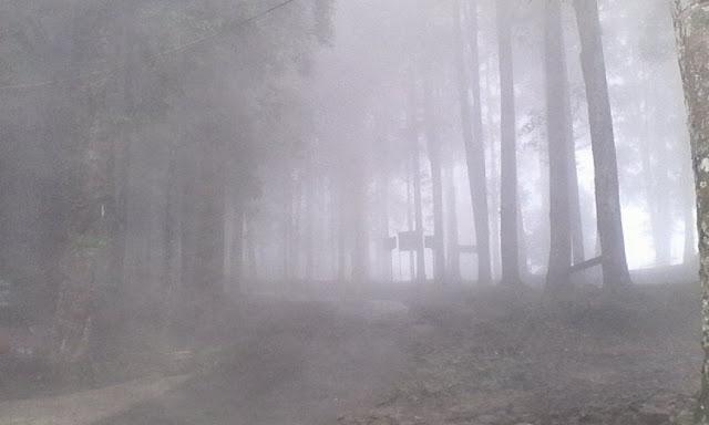 Kabut di kaki gunung Salak