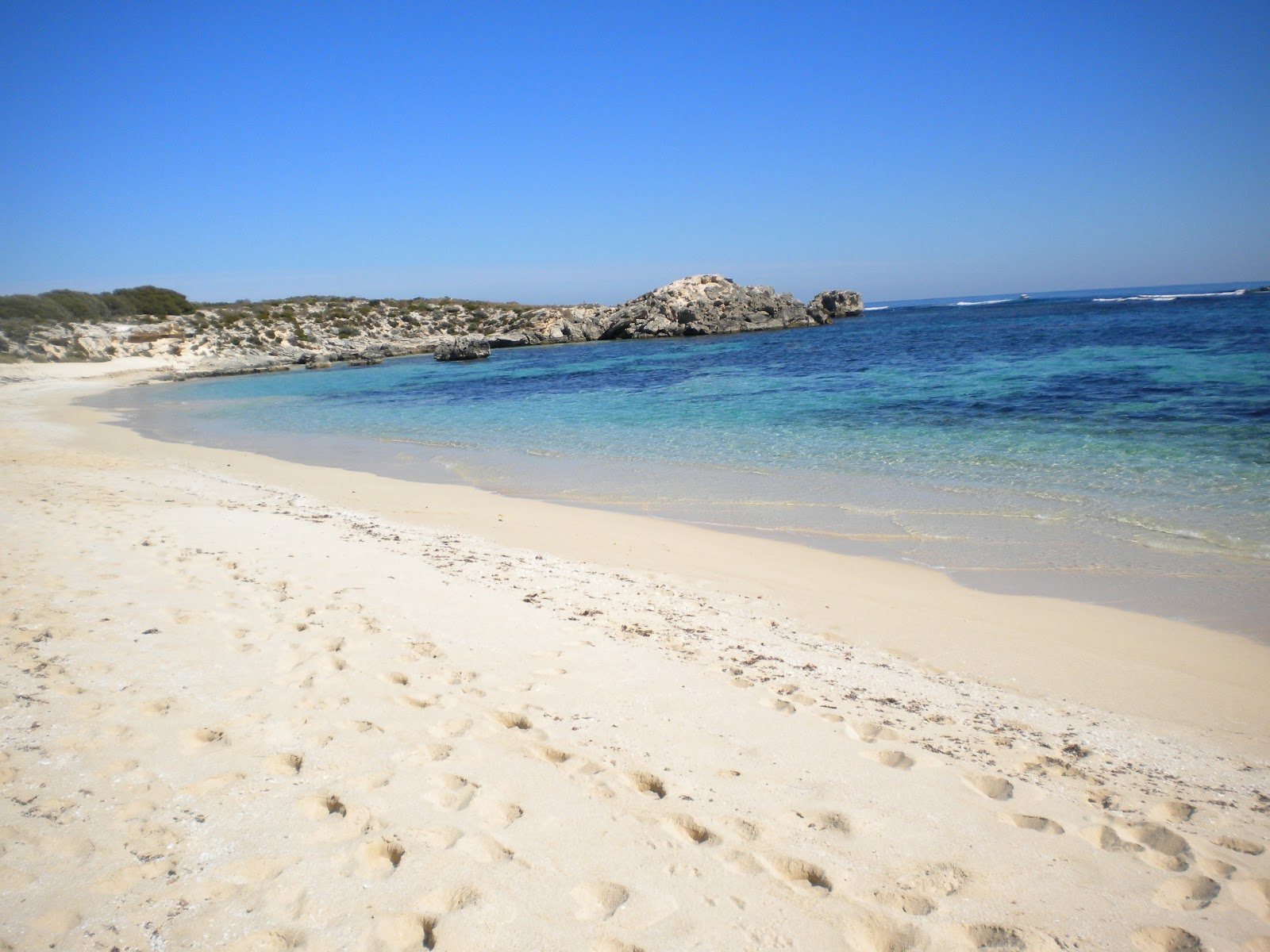 Rottnest Island Australia: Rottnest Island, Australia.