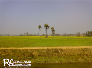 Purhara village Haspura block..