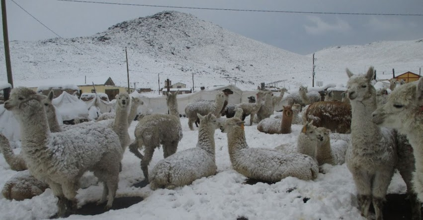 SENAMHI ALERTA: Lluvia, nieve, granizo y aguanieve soportará la Sierra - www.senamhi.gob.pe