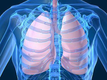 Mesothelioma is A Cast of Cancer That is Commonly Made Yesteryear Asbestos Exposure. Know Why..