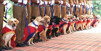 Dogs Squad To Check Smuggling Of Liquor