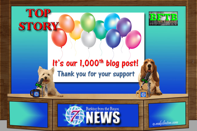 BFTB NETWoof News celebrates our 1,000th blog post