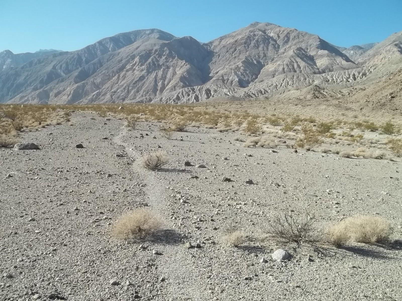 Grand Gulch Hikers: Saline Valley
