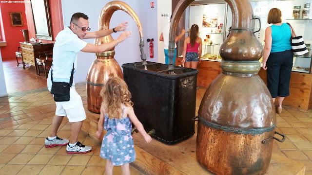 In Provenza a Grasse, la città dei profumi La fabbrica-museo