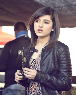 shirley setia hd photo