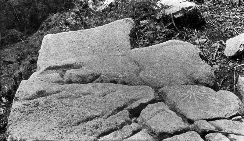 Petroglifo grabado sobre una roca con forma de estrella.