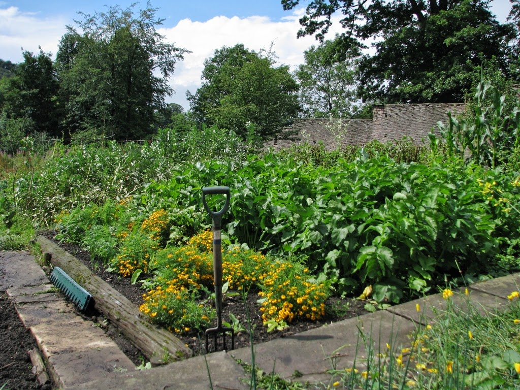 Allotments and Community Gardens | Bollington Town Council