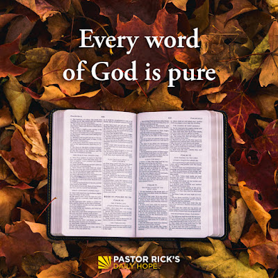 Successful Learning Starts by Immersing in God's Word by Rick Warren