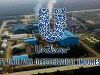 PT Unilever Oleochemical Indonesia - Recruitment For Management Trainee UOI February 2019