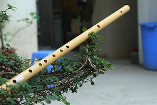 Top 10 cảm âm dễ thổi cho sáo trúc