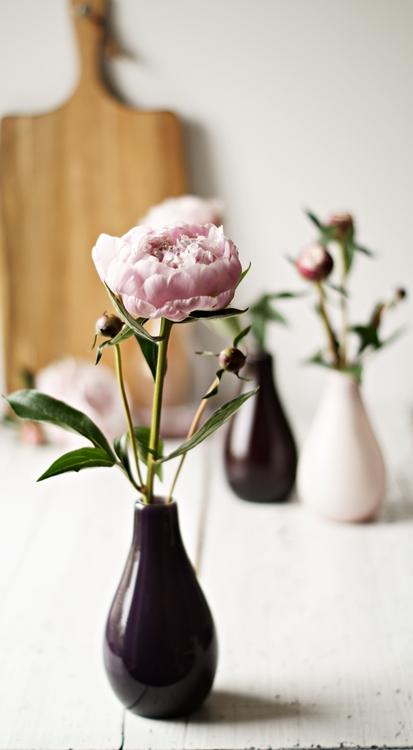 Päonie in einer lilafarbenen Vase { by it's me! }