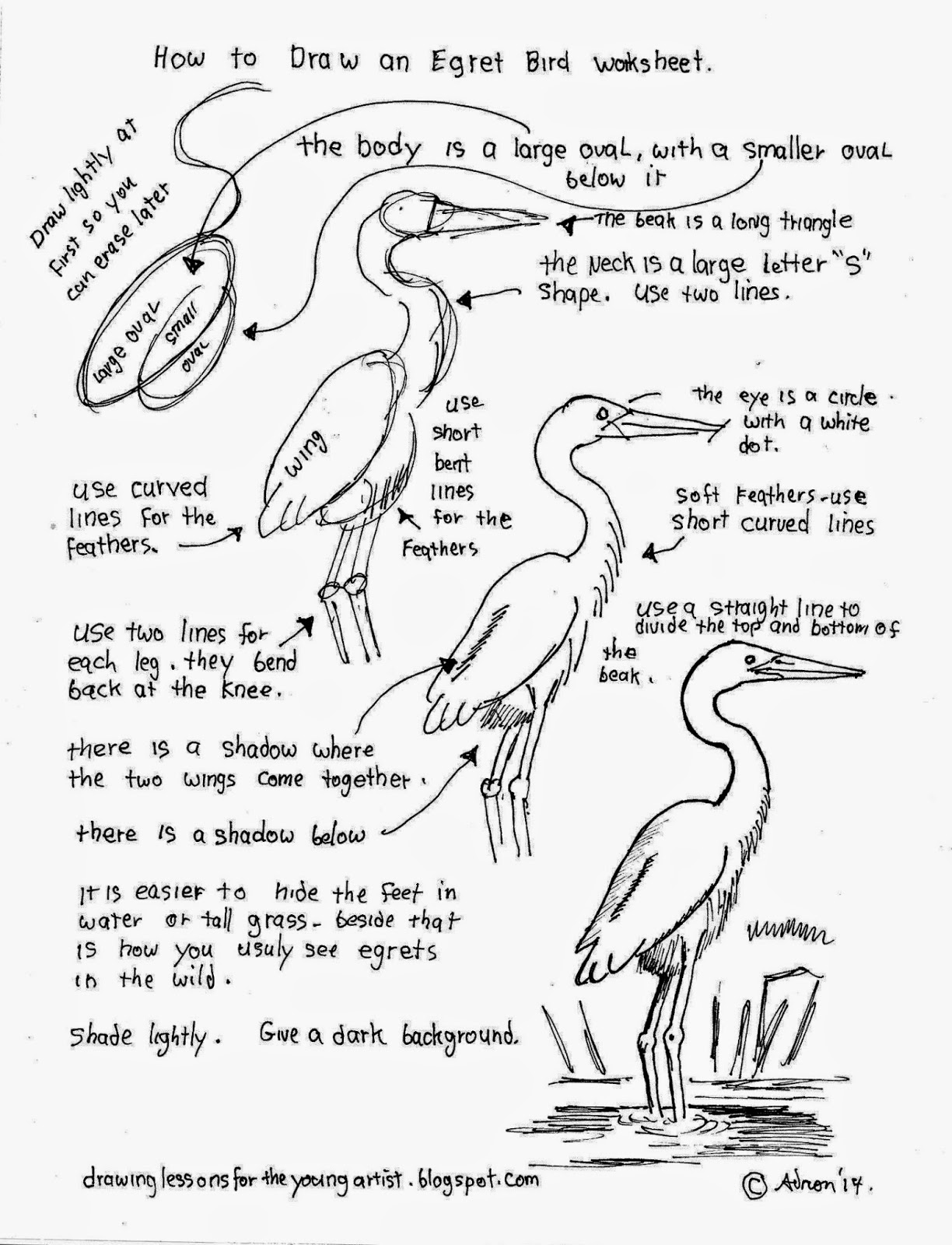 How To Draw Worksheets For The Young Artist How To Draw An Egret Bird Free Worksheet