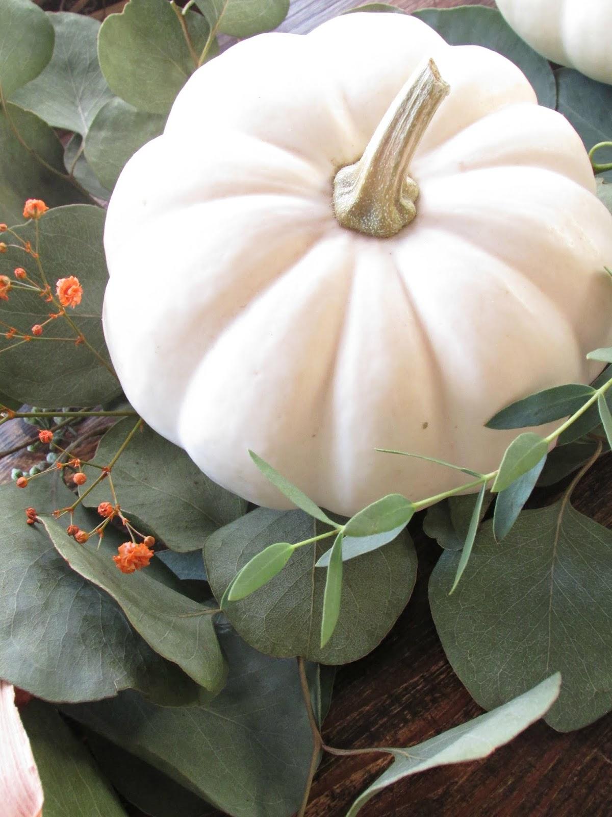 zucche bianche ornamentali