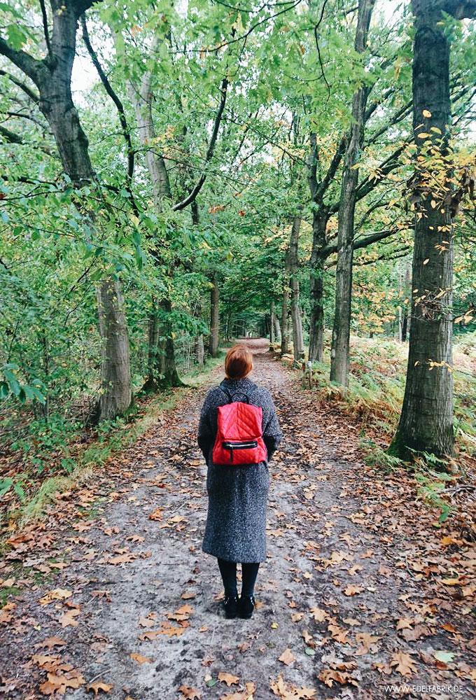 Spaziergang im Wald, Durchatmen, Entspannung