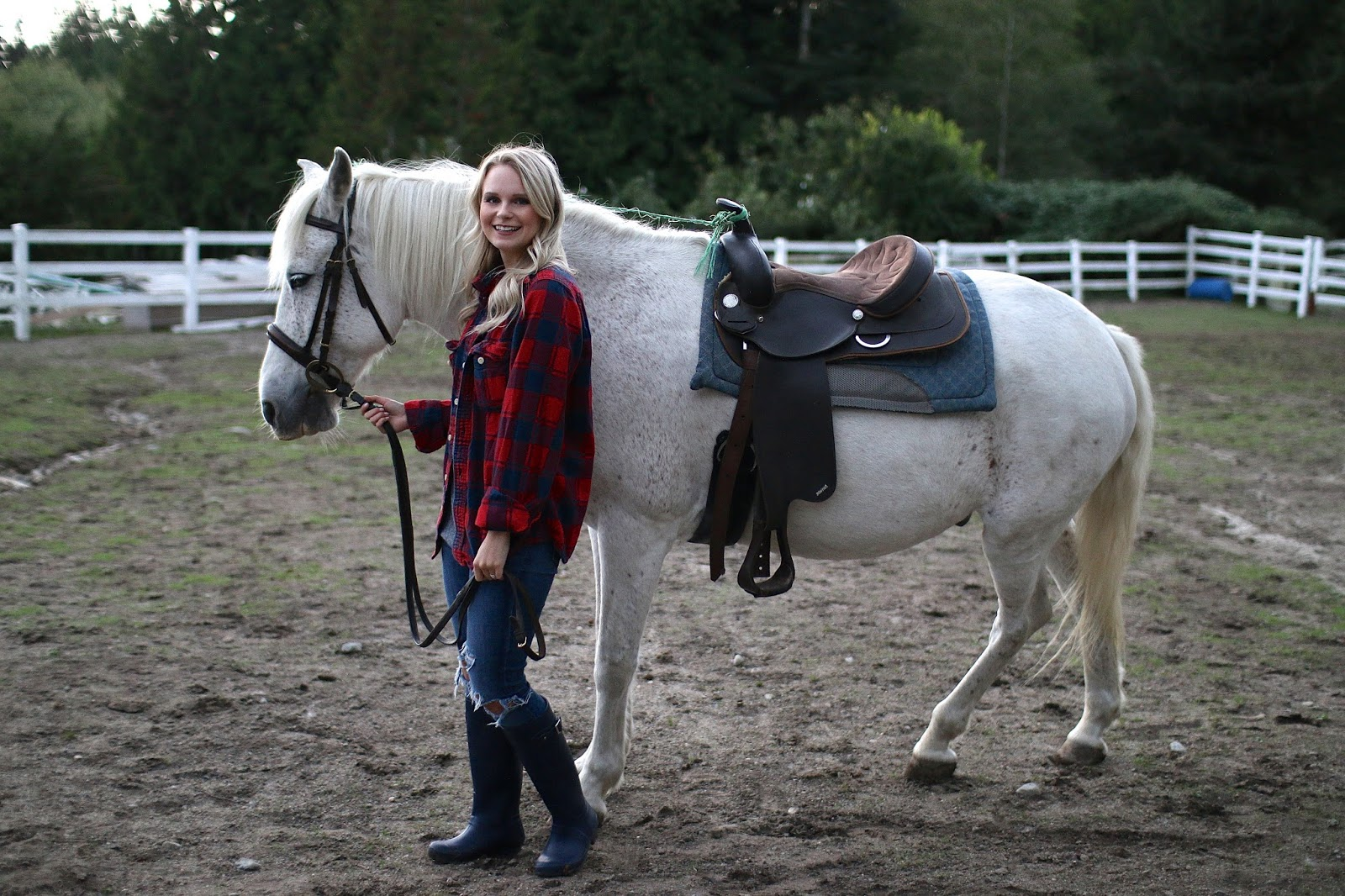 red plaid with a white horse