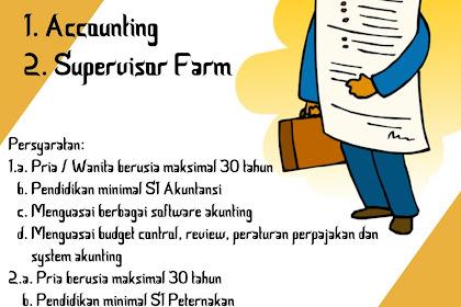 Lowongan Kerja Accounting & Supervisor Farm Farm Wahyu Ningsih