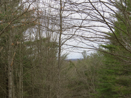 view from the North Country Trail