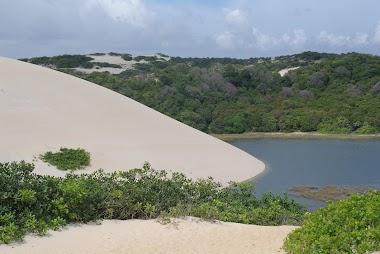 Dunas de areia no Ceará
