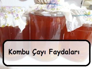 Kombu Çayı Faydaları